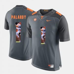 For Men's TN VOLS #1 Michael Palardy Grey Pictorial Fashion Jersey 718375-772