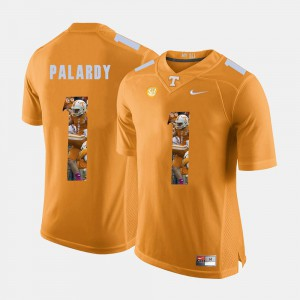 Men's University Of Tennessee #1 Michael Palardy Orange Pictorial Fashion Jersey 509005-471